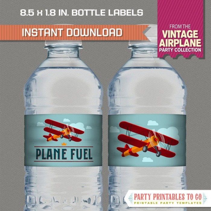 Vintage Airplane Party Bottle Labels