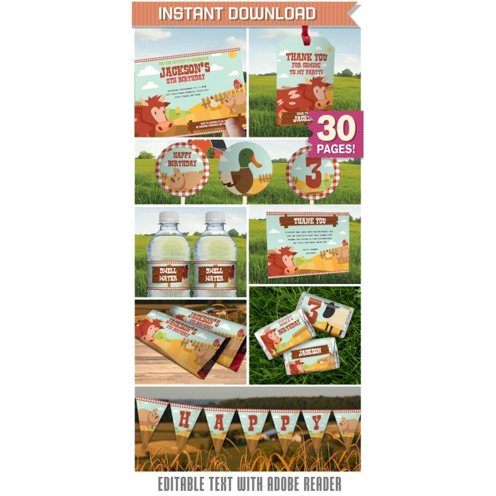 Barnyard Farm Party Invitation & Farm Party Decorations