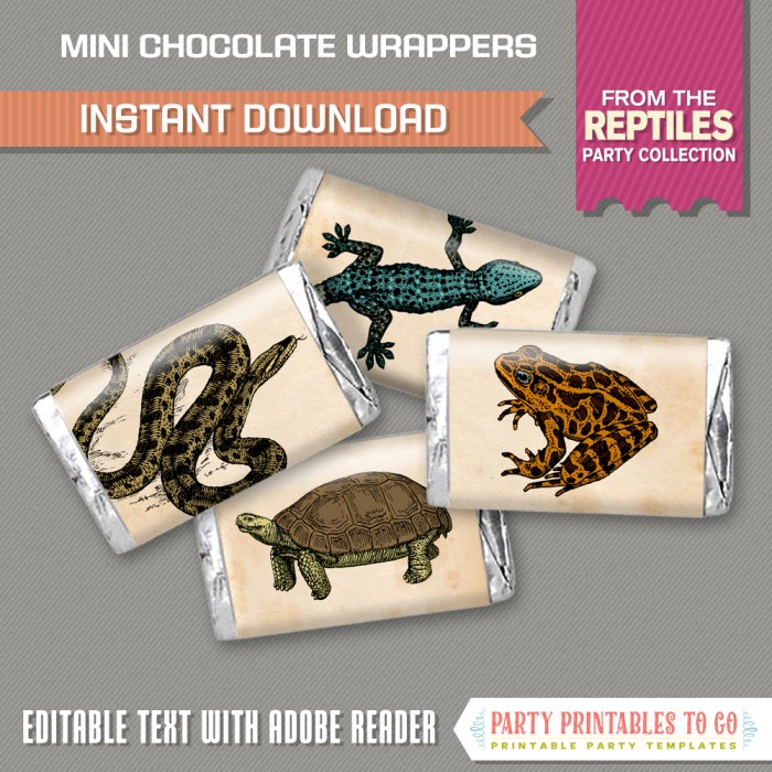 Reptile Party Mini Chocolate Wrappers