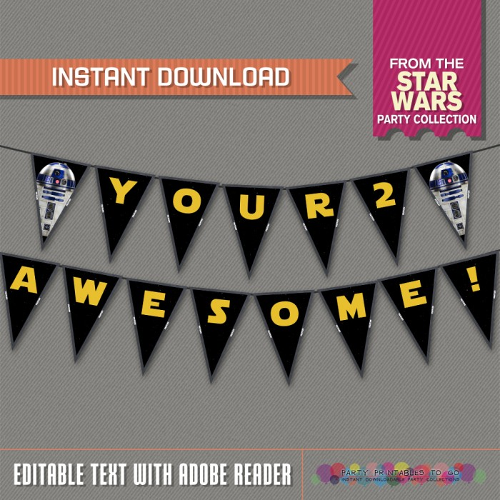Star Wars R2-D2 Party Printable Birthday Banner with Spacers